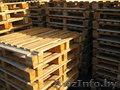 Продам поддоны деревянные бу (Светлогорск)